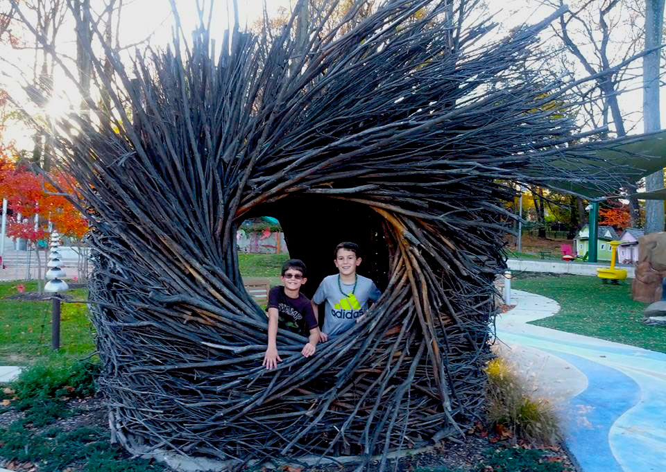 Two brothers in the nest, a structure built of sticks, located on our playground