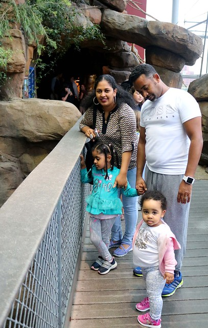 Inn families traveled to Baltimore's Inner Harbor, where they visited the National Aquarium